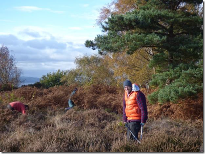 Volunteers at a workday at Cleaver Heath