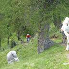 Tibet Trail jagdhof.bike (140).JPG