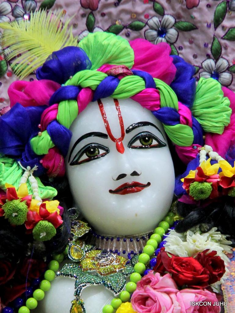 ISKCON Juhu Deity Darshan on 20th Oct 2016 (37)