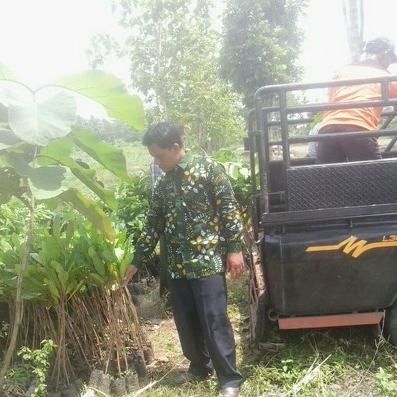 Penanaman Vegetasi di Hutan Desa Caturharjo