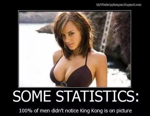Funny whatsapp Statistics image