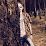 Jhoni Andreansyah ARLEWIS's profile photo