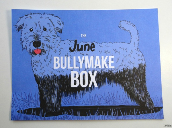 June 2018 Bullymake Box and Coupon Code 2
