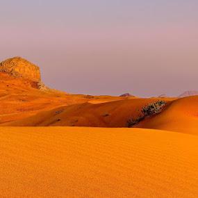 Contrast by Souhayl Bk - Landscapes Deserts ( desert )