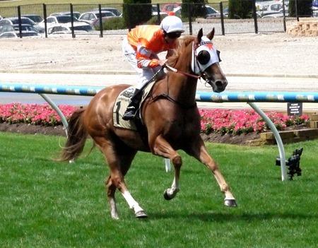 race 5_burning front 2