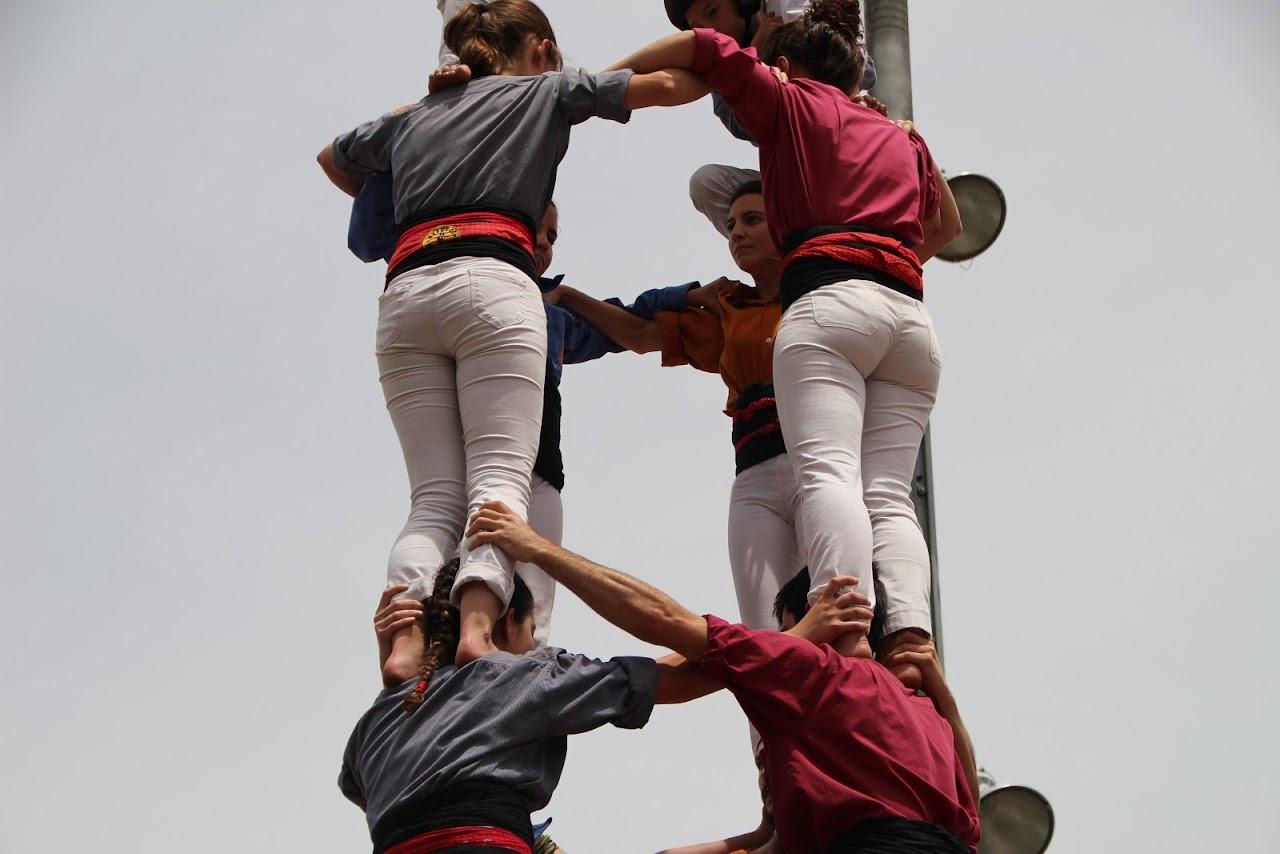 18a Trobada de les Colles de lEix (Avinyó) 12-06-2016 - IMG_2014.JPG