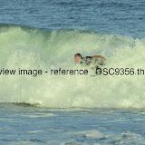 _DSC9356.thumb.jpg