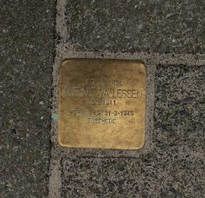 Dennenweg 131 - Stolperstein Antonie Van Essen - Maart 2017