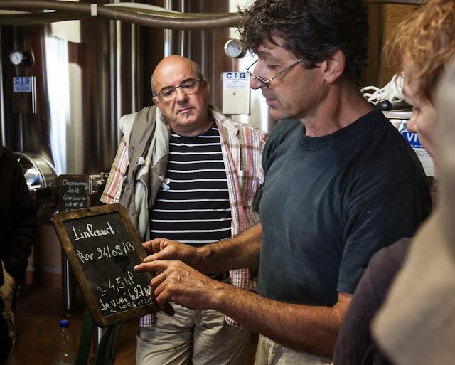 Les premiers chardonnay vendangés le 24/09 sont en cours de vinification.