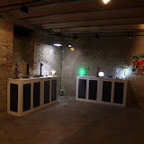 Exposició Xavier i Miquel  Collelldemont 2016  - C. Navarro GFM