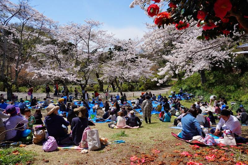 2014 Japan - Dag 7 - britt-DSC03575-0046.JPG