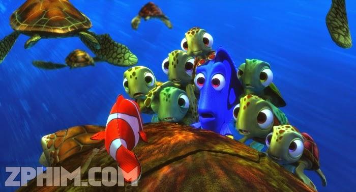 Ảnh trong phim Đi Tìm Nemo - Finding Nemo 2