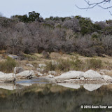 01-25-14 Texas Hill Country after an Ice Storm - IMGP1185.JPG