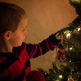 by Theresa Stevens - Public Holidays Christmas