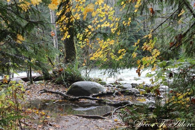 Whistler Lynn Canyon Stanley Park 083
