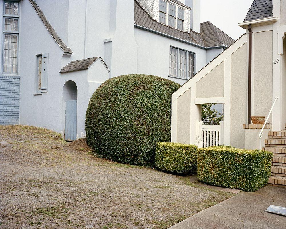 marc-alcock-topiary-3