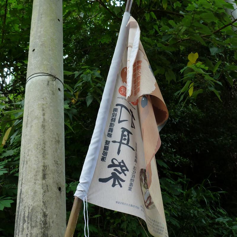 Puli  en passant , entre autres, par les villages de l ethnie Bunum de Loloko et Dili. J 10 - P1170027.JPG