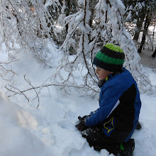 MČ zimovanje, Črni dol, 12.-13. februar 2016 - DSCN5029.JPG