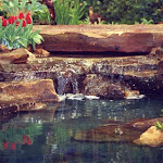 images-Waterfalls Fountains and Ponds-fount_27.jpg