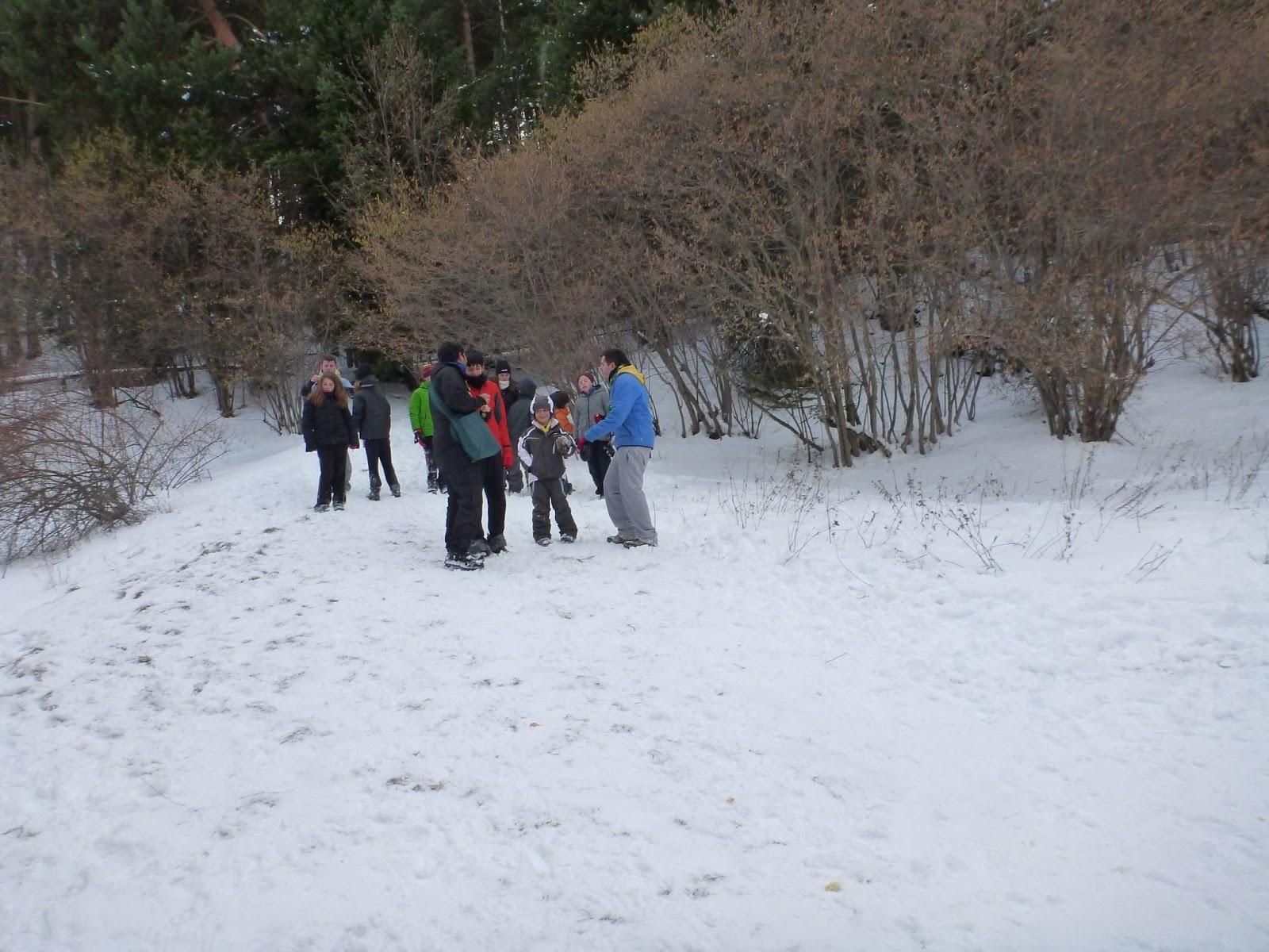 Excursió a la Neu - Molina 2013 - P1050509.JPG