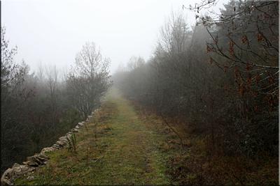 La vía romana Caesaraugusta-Beneharnum