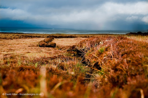 Lines in the moorland from Peat Cutting