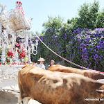 CaminandoalRocio2011_427.JPG