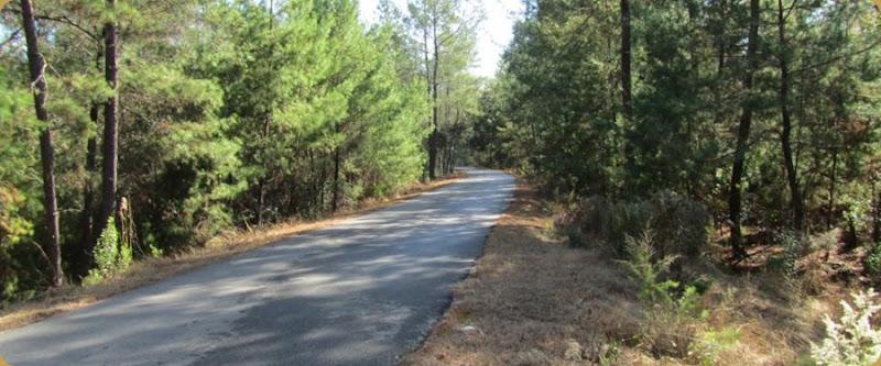 Palatka Trail