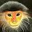 Margreeth Kennis's profile photo