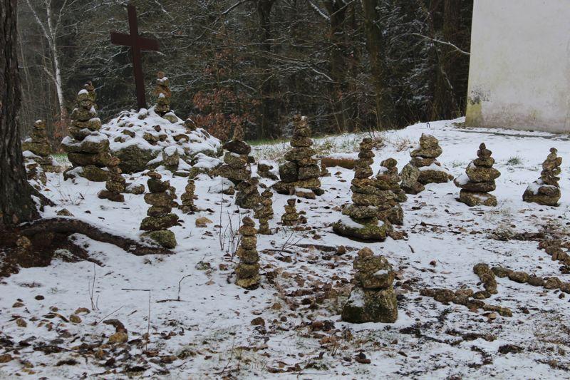01. Januar 2016: Neujahrswanderung ins Waldnaabtal - IMG_1577.JPG