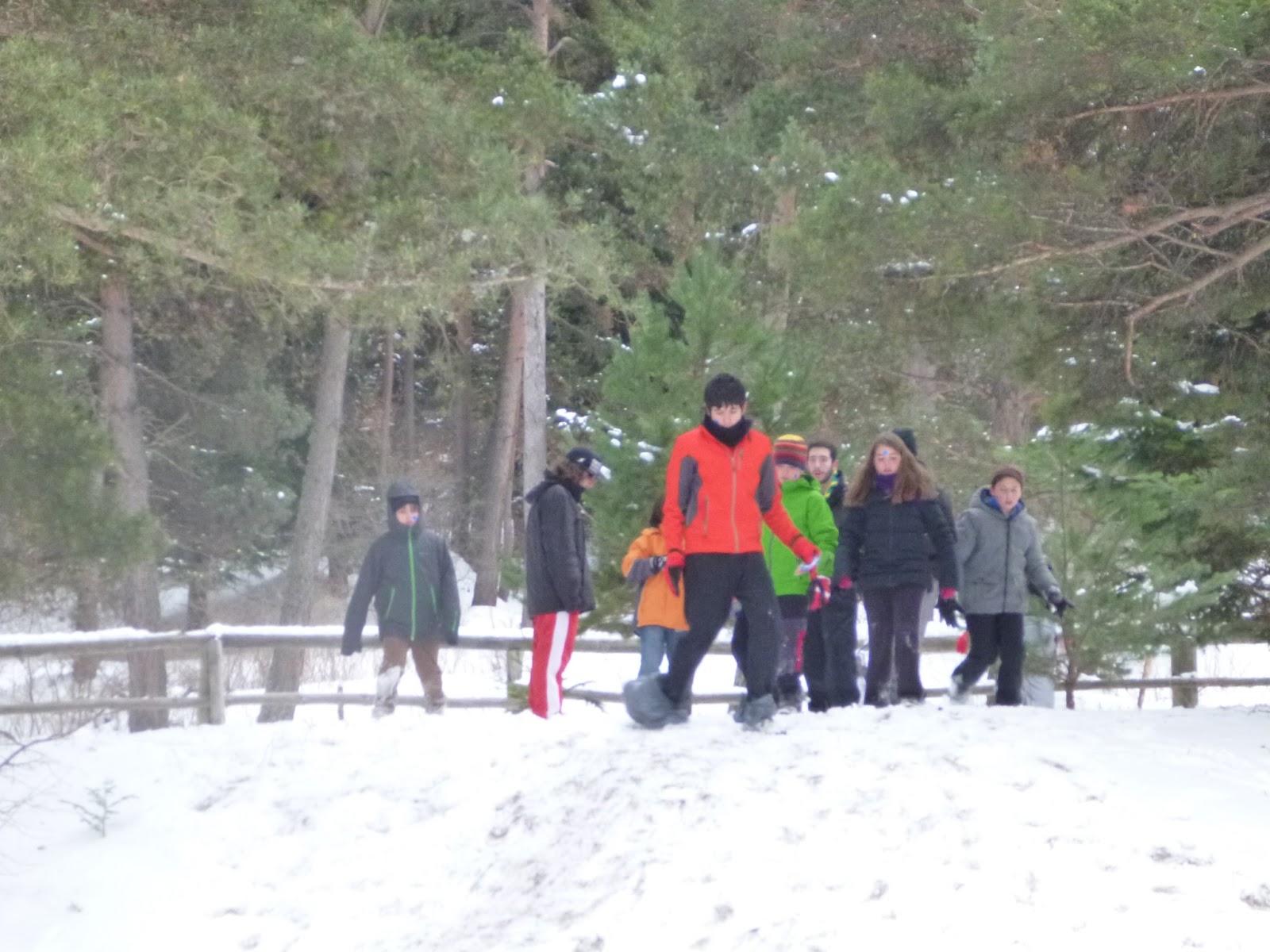 Excursió a la Neu - Molina 2013 - P1050478.JPG