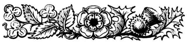 Shamrock Rose Thistle