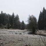 20140101 Neujahrsspaziergang im Waldnaabtal - DSC_9817.JPG