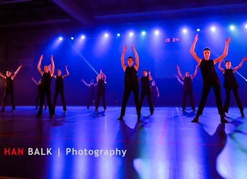Han Balk Voorster Dansdag 2016-4036-2.jpg