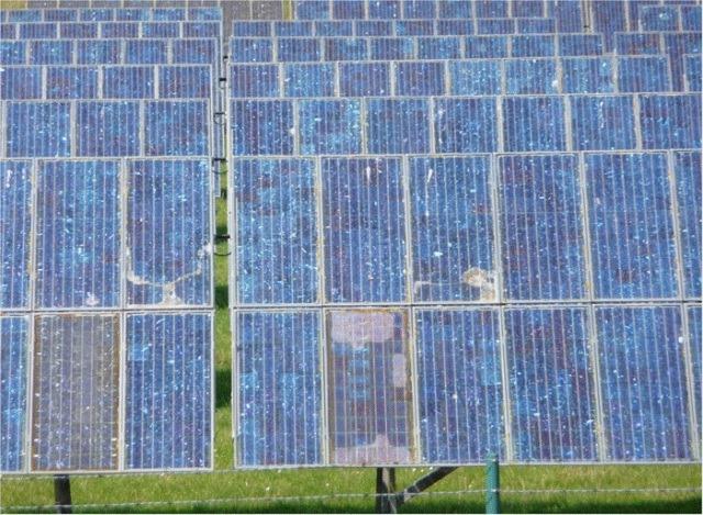 solar-farm-poison