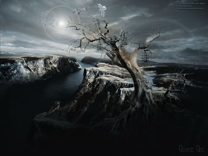 Tree At The End Of Earth, Magical Landscapes 2