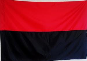 Прапор УПА з нейлону П6 (90*135см)