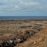 galapagos - Galapagos_FB_2-23.jpg