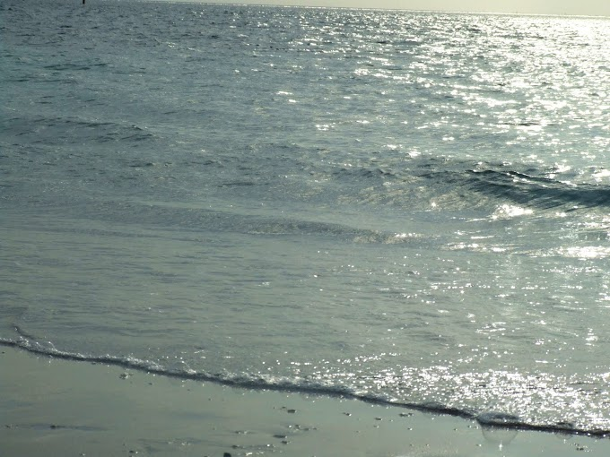 344 #海 #夏 #風景 #夕暮れ