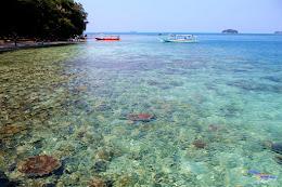 pulau harapan, 5-6 september 2015 Canon 175
