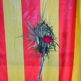 Taller de Sant Jordi 24 de març de 2014 - DSC_0298.JPG