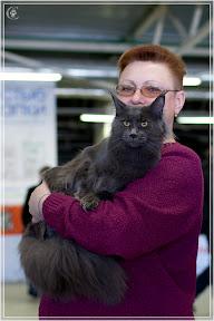 cats-show-25-03-2012-fife-spb-www.coonplanet.ru-002.jpg