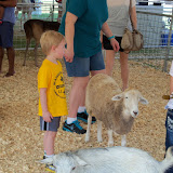 Fort Bend County Fair 2015 - 100_0195.JPG