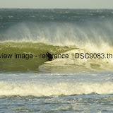 _DSC9083.thumb.jpg