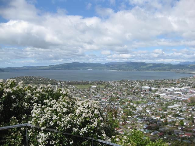 View from the Skyline Gondola, Rotorua