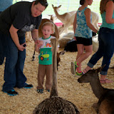 Fort Bend County Fair 2014 - 116_4336.JPG