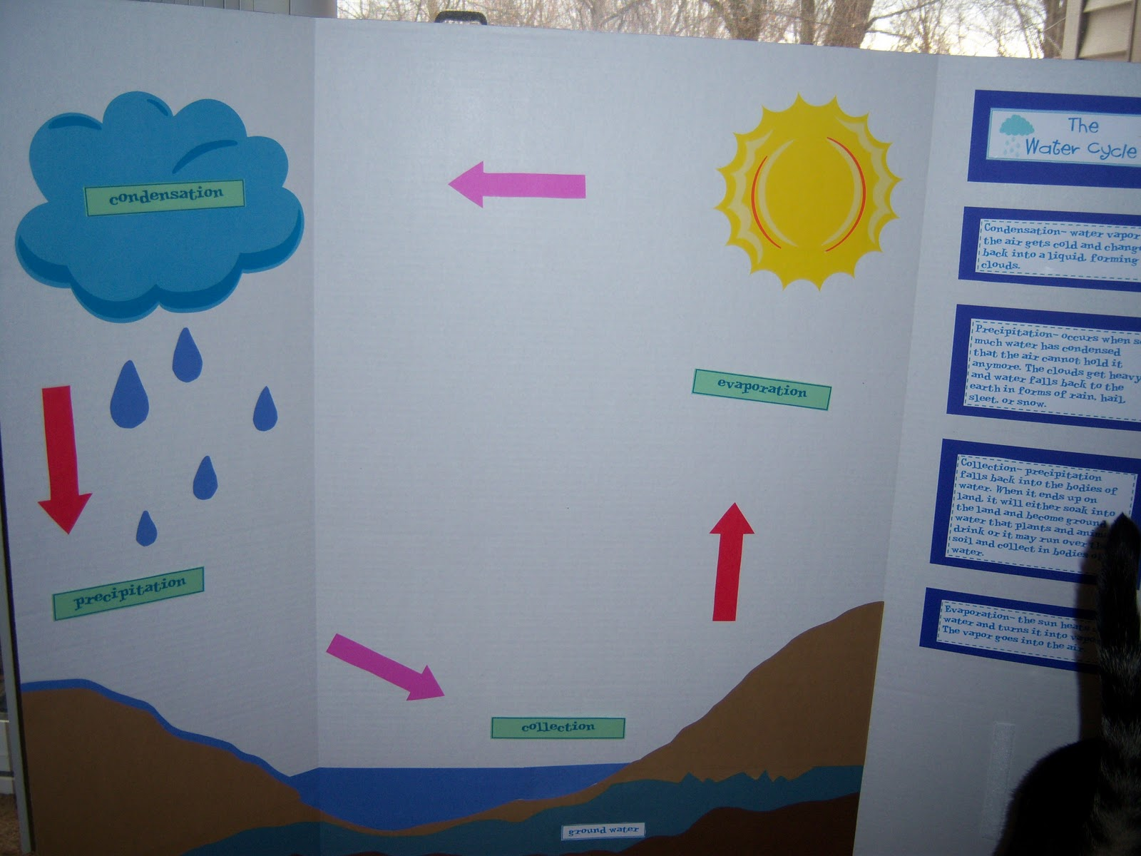water cycle poster project The main objective of the aquaenvec project was to provide decision-making  tools to optimise eco-efficiency in the urban water cycle, through environmental.