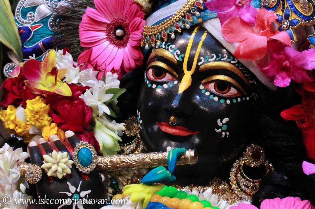 ISKCON Vrindavan Sringar Deity Darshan 25 Jan 2016 (2)