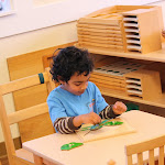 This preschool student at our Irvine Woodbridge area Montessori campus is working on a Montessori puzzle of the parts of a frog.
