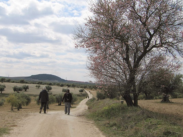 Camino de Palomero a Los Sanctos - Linde Medieval